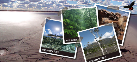 volunteer around Australia and overseas and help protect the planet