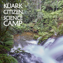 Environmental events - Citizen Science Forest Camp to protect Kuark Forest East Gippsland