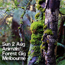 Environmental events - forest fundraiser at the Railway Hotel - Animals!