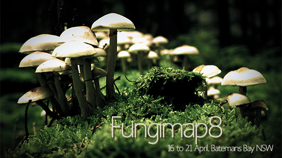 Environmental events- Fungimap8 Conference, Batemans Bay 16 to 21 April