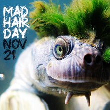 environmental events - Mad Hair Day for Turtles and Dugongs