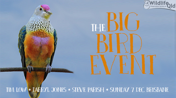 Environmental and social justice event - The Big Bird Event Brisbane Sunday 7 December