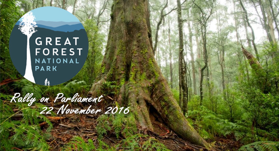 Great Forest National Park Rally on Parliament 22 November 2016